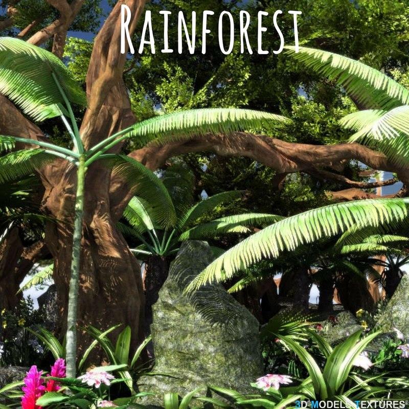 rainforest forest 3D model