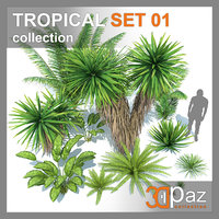 TROPICAL SET 01
