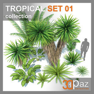 tropical set 01 3D model