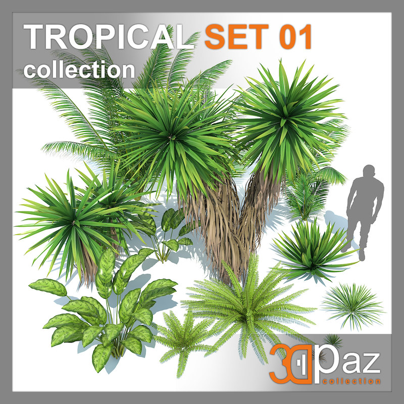 tropical set 01 3D model