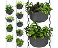 Hanging plants 001