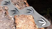 3D t rex tracks element