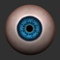 eye realistic colored 3D model