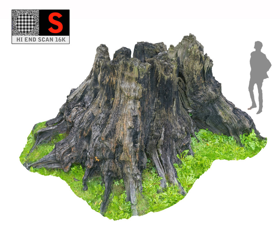 scanned hd 3D