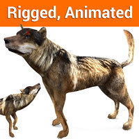 wolf rigged animation 3D
