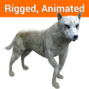 wolf rigged animation 3D model
