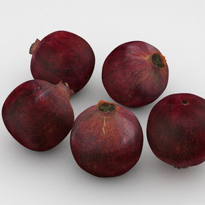 pomegranate fruit 3D model