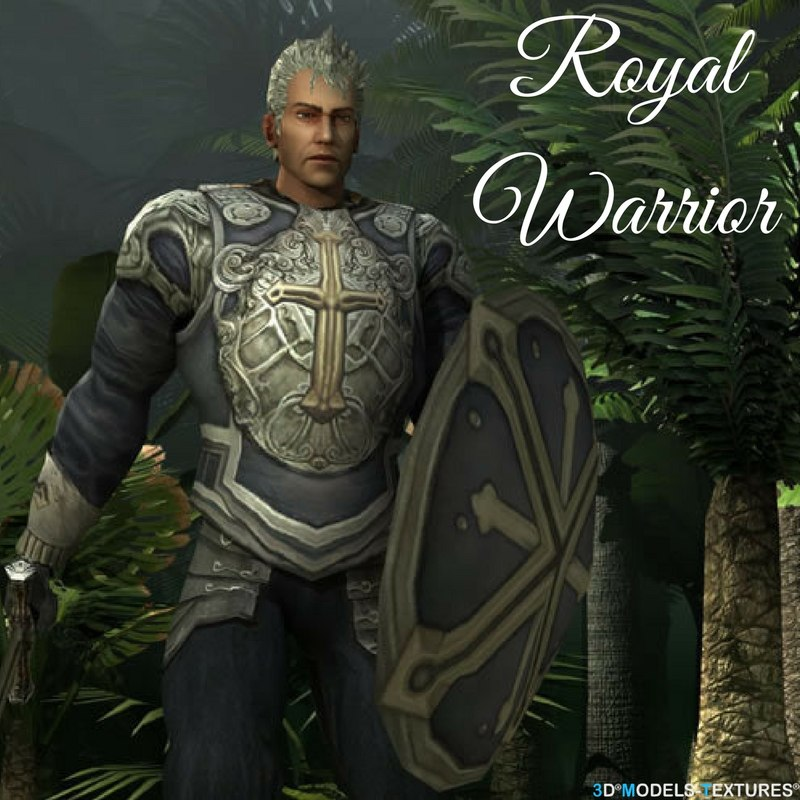 3D royal warrior