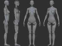3D articulated doll model