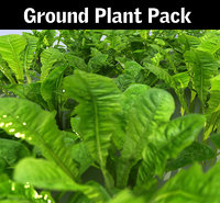 ground plant pack model