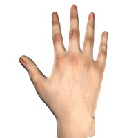VR Females Hand