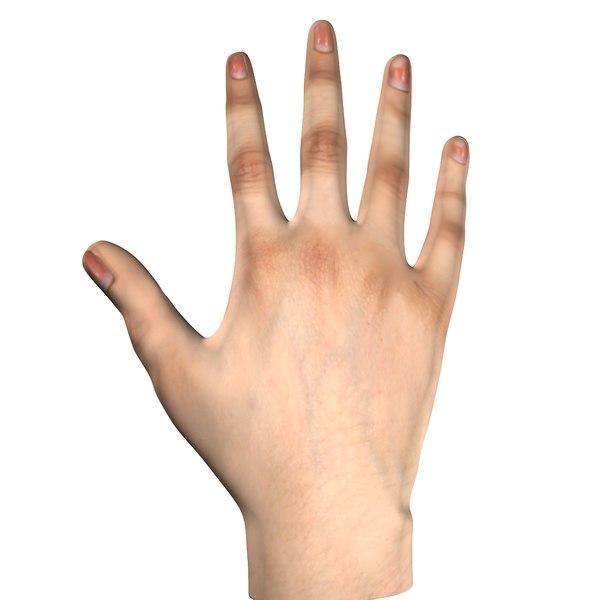 3D model female hand