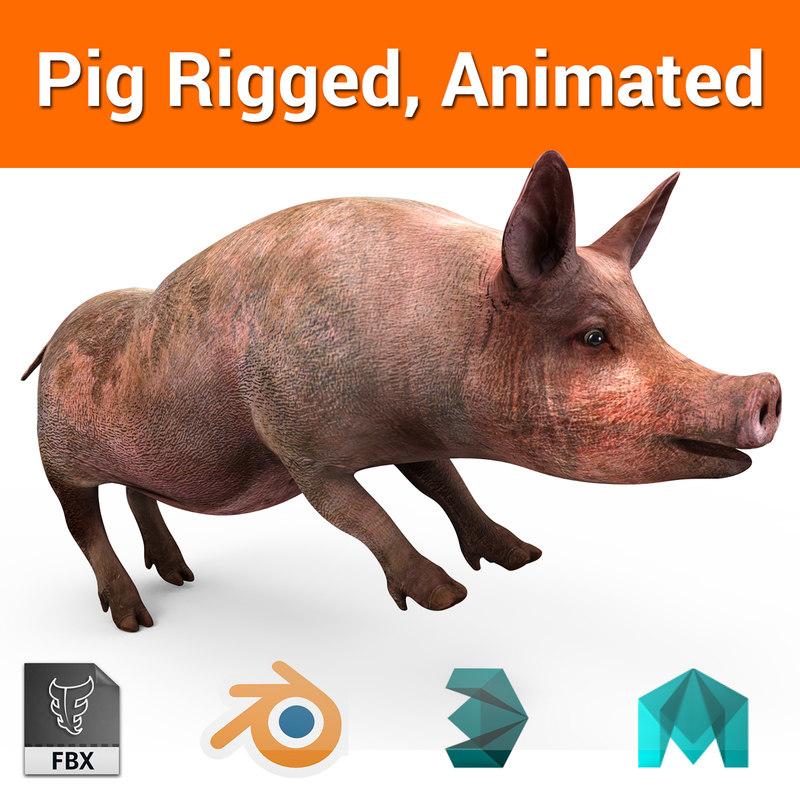 pig rigged animation 3D model