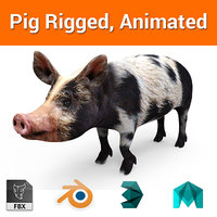 Black pig Rigged, Animated model