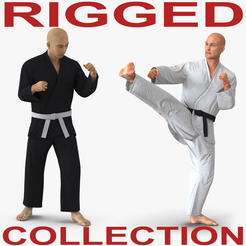 3D model rigged karate fighters