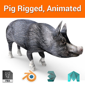 pig rigged animation 3D model