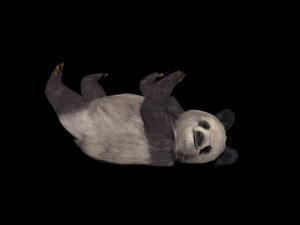3D model fur animations