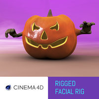 3D model funny rigged pumpkin