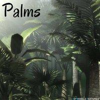 3D palms