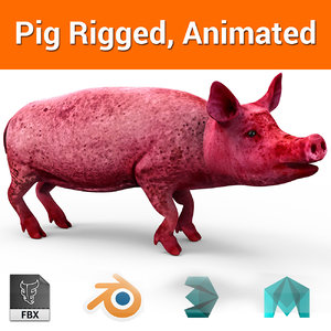 pig rigged animation 3D