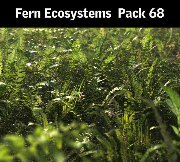 3D fern ecosystems pack 68 model