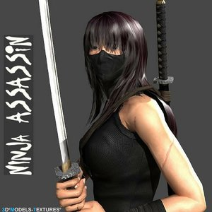 3D model ninja assassin
