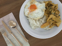 Food Curry Rice and Egg