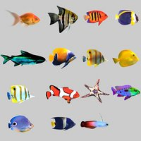 Aquarium Fish Collection Low Poly