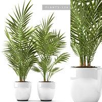 3D plants 124