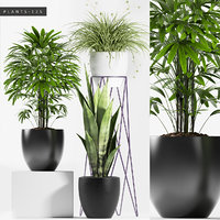 plants set 125