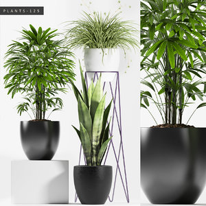 plants 125 set model