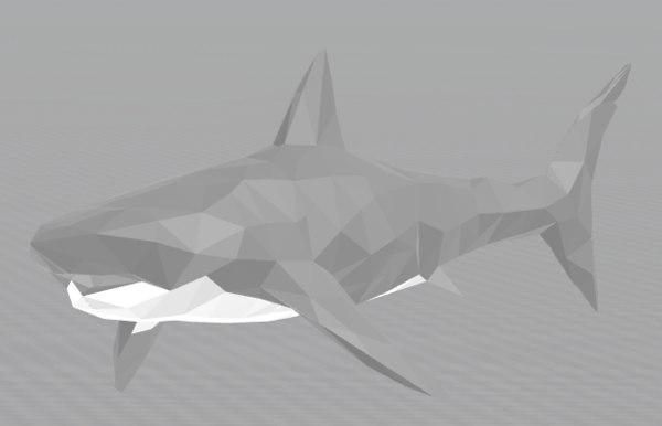 3D 6 animal model