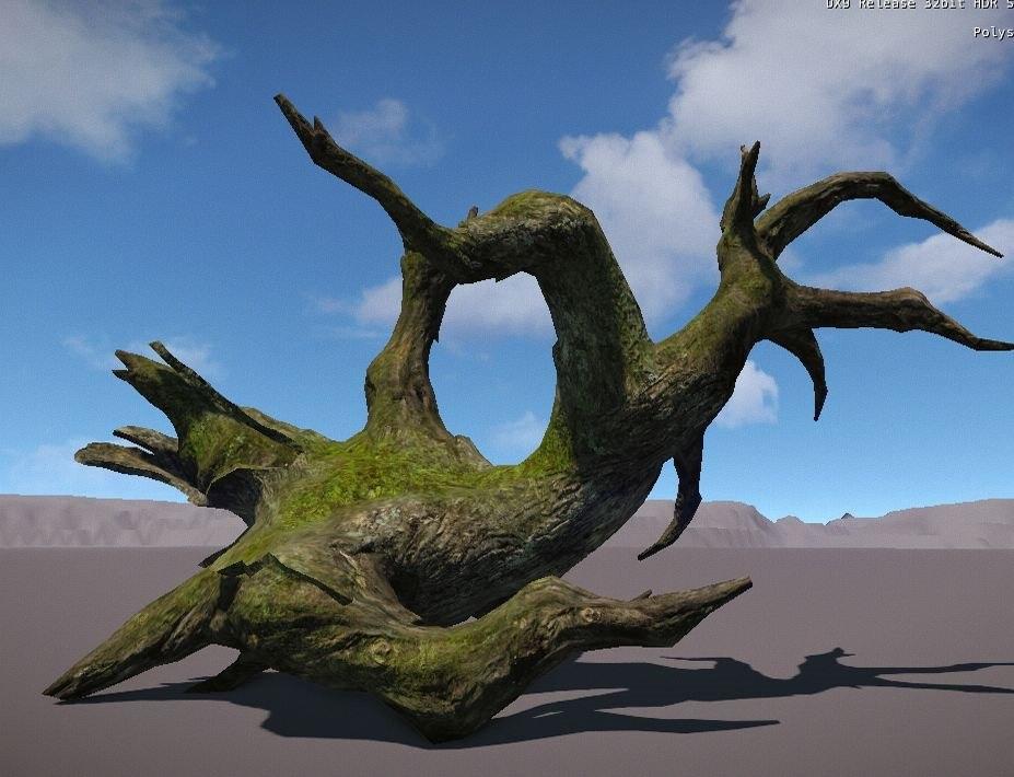 3D plant conifer