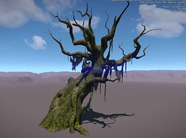 3D model plant conifer