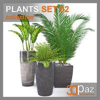 3D cycas plant pot