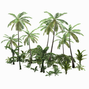 3D low-poly tropical palm trees