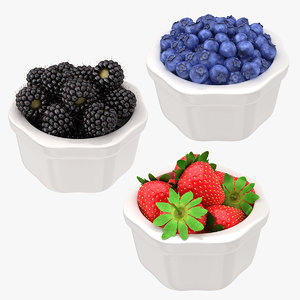 berry fruit bowl set model