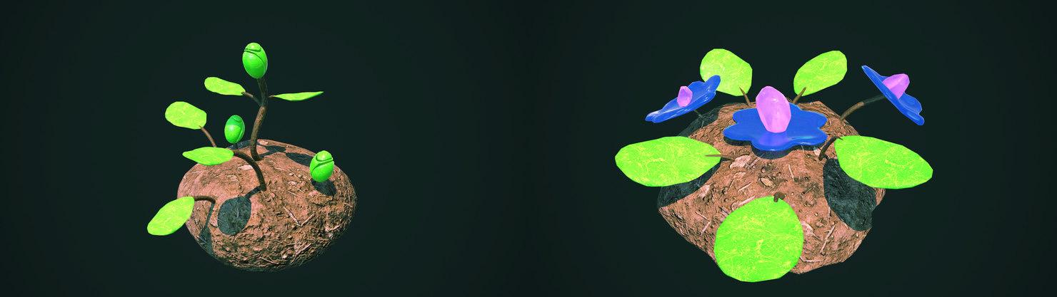 3D model flowers evolution