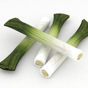 3D leek vegetable