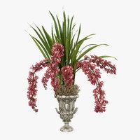 orchids cymbidiumc 3D model