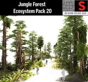 jungle forest ecosystem pack 3D model