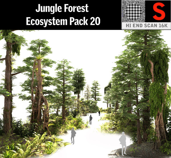 jungle forest ecosystem pack 3D model
