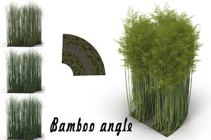3D bamboo corridor model
