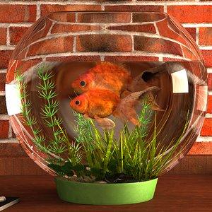 gold fish aquarium 3D model