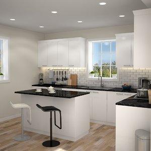 modern kitchen interior model