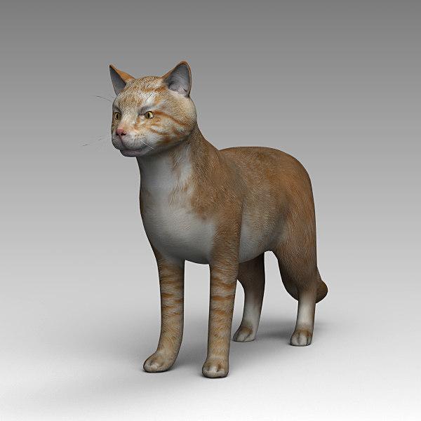 3D model red-headed cat