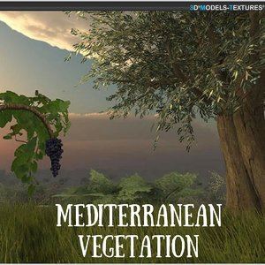 mediterranean vegetation 3D model