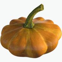 squash pumpkin 3D model