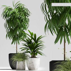 3D plants set 134