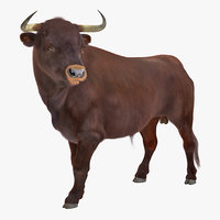 3D bull standing pose fur